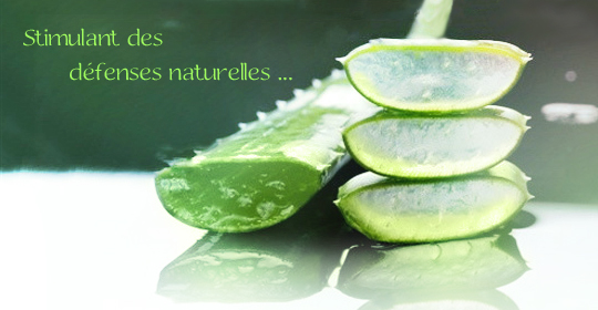 stimulant des defenses naturelles
